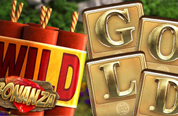 To Gamble Gainfully You Require to Download Slot Bonanza to install on your Gadget